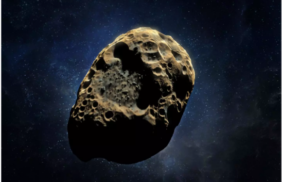 FlyByAsteroids.com » 3 New Asteroids Discovered